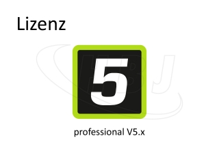 MADRIX License professional V5.x